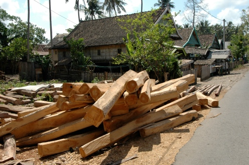 Timber deposited along the roads of Bira.
